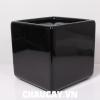 chau-composite-anber-vuong-cao-cap-1476 (1)