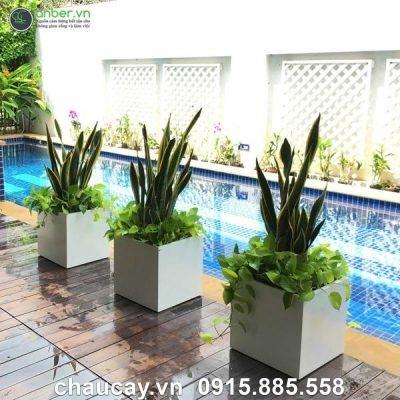 Chậu cây cảnh composite anber cao cấp 1055Chậu cây cảnh composite anber cao cấp 1055