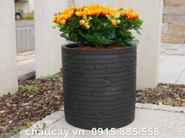 chau-cay-canh-composite-ipot-tru-tron-dep-ip-00019 (3)
