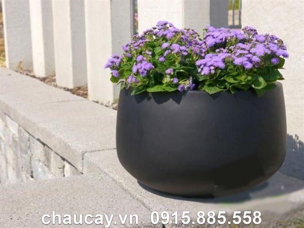 Chậu composite ipot trồng cây trụ tròn thấp   IP-00028