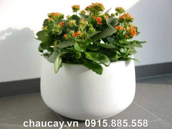 chau-composite-ipot-trong-cay-tru-tron-thap-ip-00028 (3)