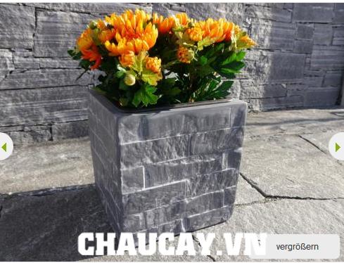 chau-composite-ipot-vuong-tthap-sang-trong-ip-00003 (1)