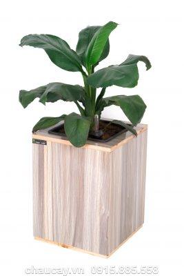 Chậu gỗ thông minh tự tưới Green Archi vuông trung   GA - 111B