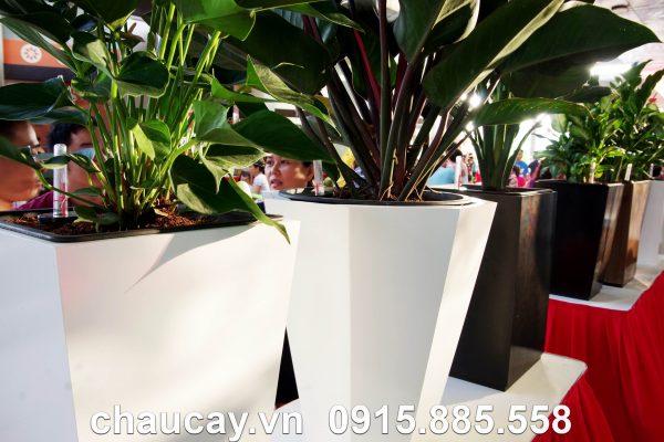 Chậu Gỗ Tự Tưới Green Archi Bát Giác Vát Đáy Trung | Ga - 423B