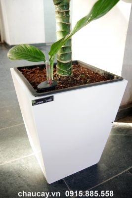 Chậu gỗ tự tưới Green Archi vuông vát đáy trung | GA - 121B