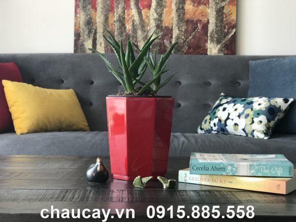 Chậu Green Archi để bàn bát giác vát đáy | GAB-423A