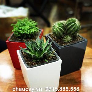 Chậu Green Archi để bàn vuông vát đáy | GAB - 121A