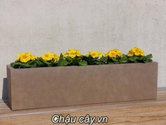 Chậu Nhựa Composite Ipot Hình Chữ Nhật | Ip-00006