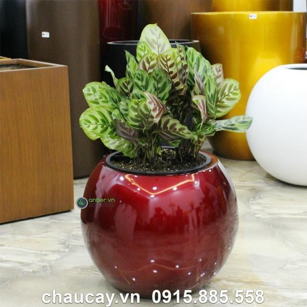Chậu trồng cây composite anber tròn sang trọng SE8889