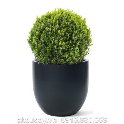 Chậu trồng cây composite Havico Casa tròn | CB-314