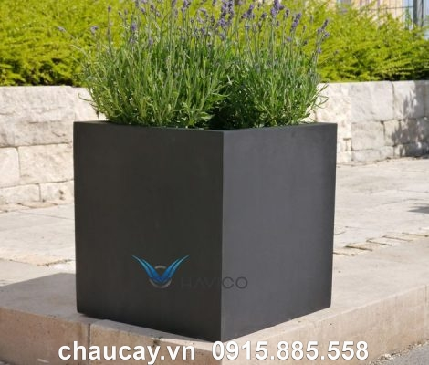 Chậu Nhựa Composite Havico Cubo Vuông Thấp   C37