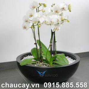 Chậu nhựa trồng cây composite Tapi | C313