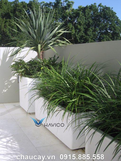 Chậu Nhựa Composite Havico Visio Chữ Nhật Dài| C319