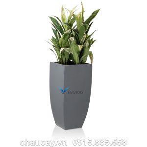 Chậu đá mài Havico Balm trồng cây cao cấp | CM-251
