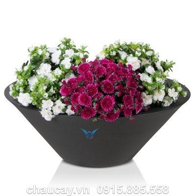 Chậu nhựa trồng cây cảnh composite Havico Tazah | C316