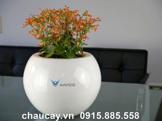 Chậu Cây Composite Havico Mina Tròn| Cb-317