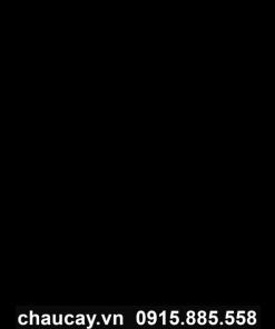 Chậu Composite trồng cây tròn cao cấp - mã 11662