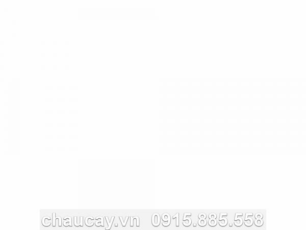 chau-composite-tru-tron-cao-ma-11432 (1)