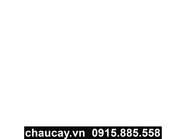 chay-cay-composite-tron-vat-day-11301