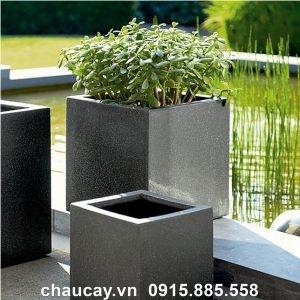 Bình hoa Composite trồng cây cảnh vuông thấp