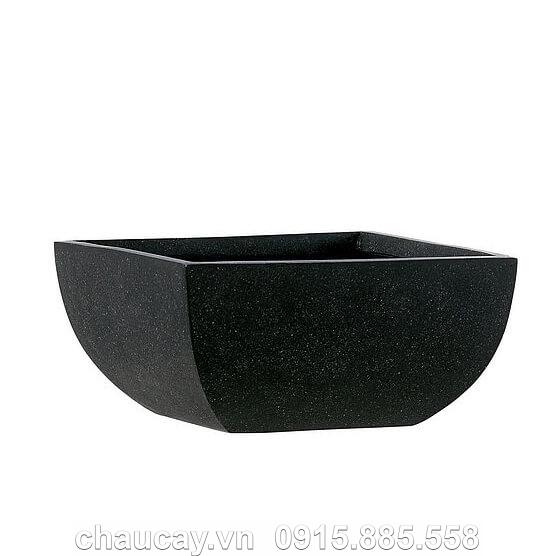 chau-cay-composite-esteras-van-da-den-brielle-cao-cap (1)
