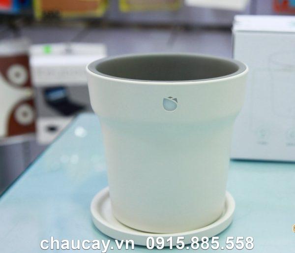 chau_cay_thong_minh_xiaomi_ropot (1)