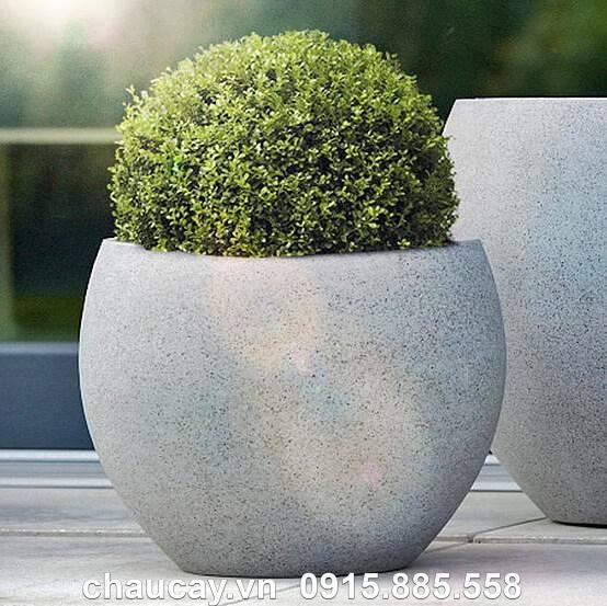 Chậu hoa nhựa Composite Esteras Heerle trồng cây cảnh