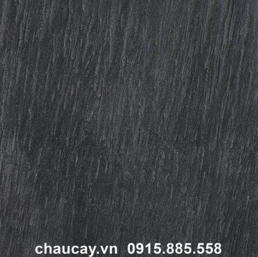 Chau Composite Esteras Mau Than Chi